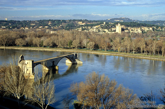 Old bridge in Avignon