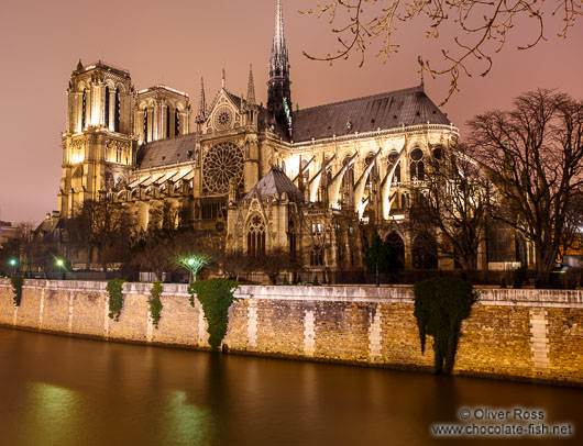 View of Notre Dame cathedral from across the Seine river