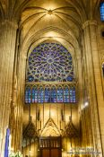 Travel photography:Rose window inside the Notre Dame cathedral in Paris, France