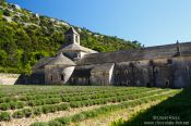 Travel photography:The Abbey of Notre Dame de Sénanque near Gordes, France