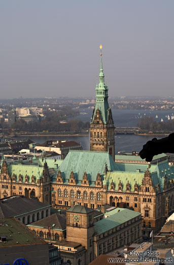 Aerial view of Hamburg`s Rathaus (City Hall) with gargoyle