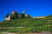 Travel photography:View of the Schloss Ortenberg castle and adjacent vineyards, Germany