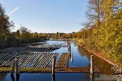 Travel photography:Logs in a side arm of the Kiel canal connecting the North and Baltic Seas near Kiel, Germany