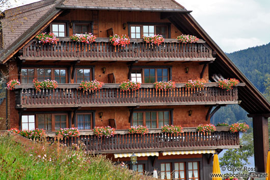 Black Forest house near Titisee