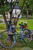 Travel photography:Bike with flowers in the Black Forest near Titisee, Germany