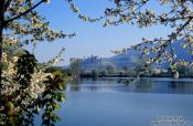 Travel photography:Schloss Ortenberg at the foot of the Black Forest, Germany