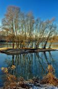 Travel photography:Island with trees in the river Rhine near Kehl, Germany