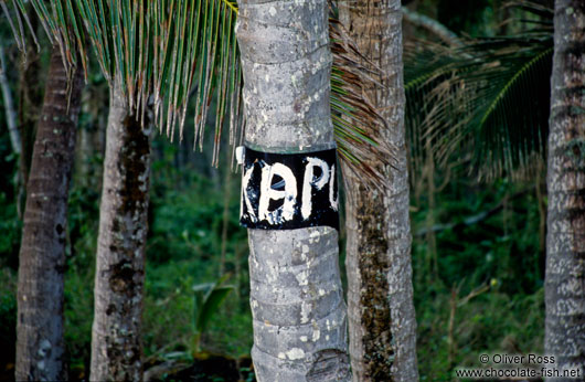 This forest is kapu (taboo)