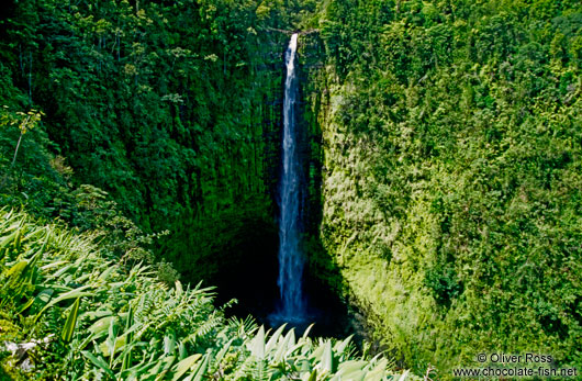 Tall waterfall on Hawaii Island