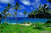 Travel photography:Makapuu Beach County Park on Oahu, Hawaii USA