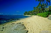 Travel photography:Beach near Honolulu, Hawaii USA