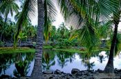 Travel photography:Pu`uhonua o Honaunau, Royal fish pond, Hawaii USA