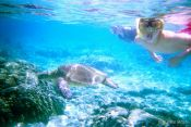 Travel photography:Sea turtle under water, Hawaii USA