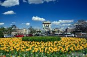 Travel photography:The Chain Bridge in Budapest with flower bed, Hungary