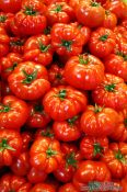 Travel photography:Budapest market tomatoes , Hungary