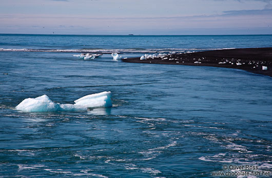 Icebergs floating to sea through the outlet of the Jökulsárlón
