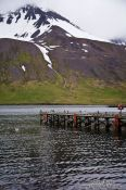 Travel photography:The pier in Siglufjörður harbour, Iceland
