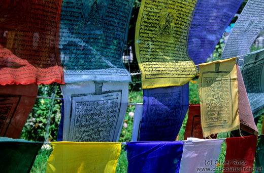 Buddhist prayer flags outside the Dadhan Thekchokling Gompa in Manali