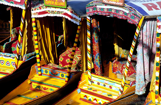 Parked water taxis on Dal Lake in Srinagar