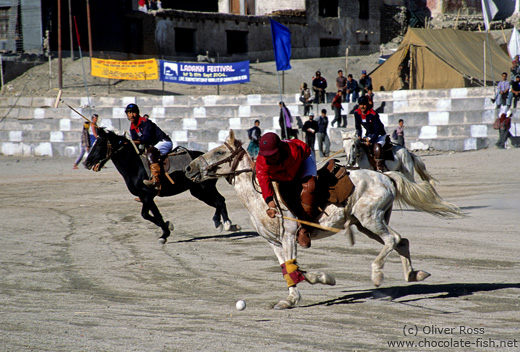 Playing polo in Leh