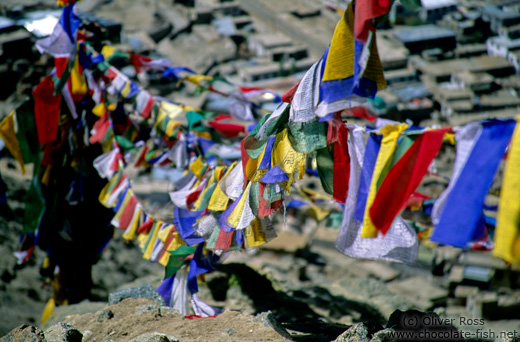 Prayer flags over Leh
