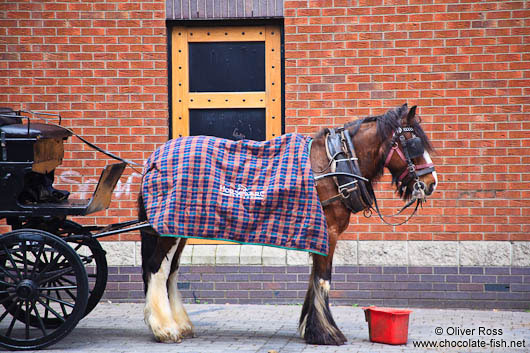 Horse cart in Dublin