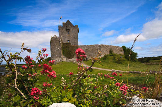 Dunguaire Castle in Clare