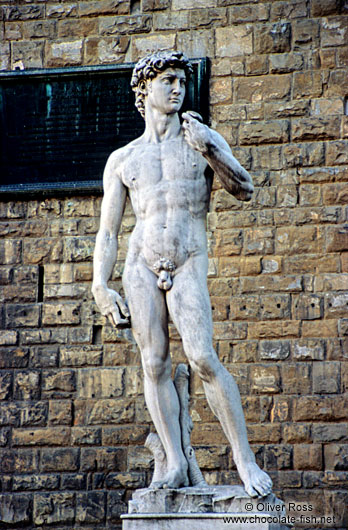 Michelangelo`s David in Florence