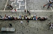 Travel photography:Piazza San Marco with visitors and pigeons, Italy