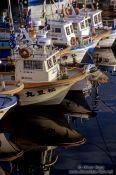 Travel photography:Boats in a harbour on Hokkaido, Japan
