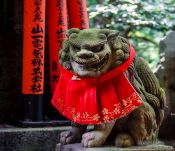 Travel photography:Stone dog sculpture at Kyoto`s Inari shrine, Japan