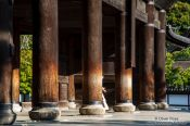 Travel photography:Wooden pillars at the samon (main gate) to Kyoto´s Nanzenji Temple, Japan