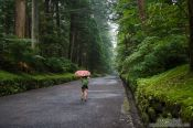 Travel photography:Path at the Nikko Unesco World Heritage site, Japan