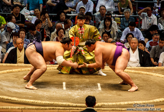 A bout begins at the Nagoya Sumo Tournament
