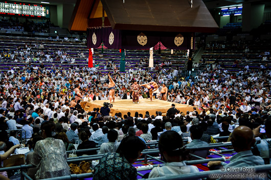 Spectaros and ring at the Nagoya Sumo Tournament