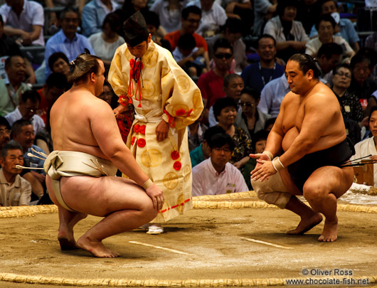 Preparing for a bout at the Nagoya Sumo Tournament