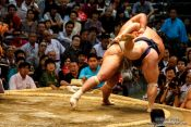 Travel photography:Throwing your opponent off balance at the Nagoya Sumo Tournament, Japan