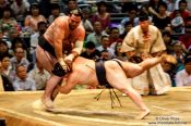 Travel photography:Bringing your opponent to the ground at the Nagoya Sumo Tournament, Japan
