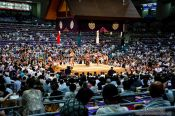 Travel photography:Spectaros and ring at the Nagoya Sumo Tournament, Japan