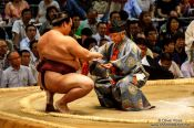 Travel photography:Honouring the winner of a bout at the Nagoya Sumo Tournament, Japan