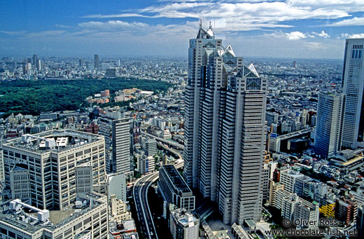 View of Tokyo from the Metropolitan Government Building in Shinjuku