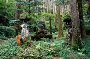 Travel photography:Forest shrine in the Japanese Alps, Japan
