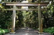Travel photography:Gate to Tokyo´s Meiji shrine, Japan
