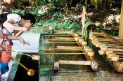 Travel photography:People perfom the ritual cleansing at Tokyo´s Meiji shrine, Japan