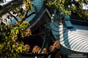 Travel photography:Roof construction at Tokyo´s Meiji shrine, Japan