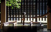 Travel photography:Ritual water fountain outside Tokyo`s Meiji Shrine, Japan