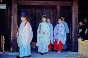 Travel photography:Tradition wedding company at the Meiji Shrine in Tokyo, Japan