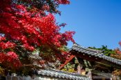 Travel photography:Bulguksa Temple, South Korea