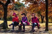 Travel photography:Bulguksa Temple visitors, South Korea