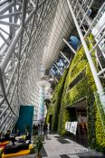 Travel photography:The Green Wall inside the Seoul city hall, South Korea